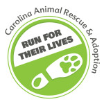 CARA Run for their Lives | 10k and 5k @ Kiwanis Park | Sanford | North Carolina | United States